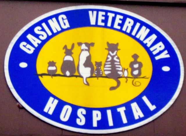 Gasing Veterinary Hospital Picture