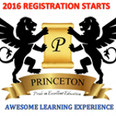 Princeton Education business logo picture