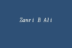 Zamri B Ali business logo picture