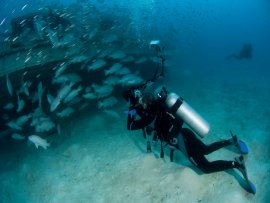 It is not just about Diving in Sipadan picture