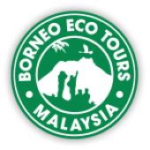 Borneo Eco Tours business logo picture