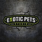 Exotic Pets Studio business logo picture