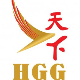Hgg Tour Connections Air Tour Express Kulai Travel And Tours Agency In Kulai