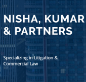 Nisha, Kumar & Partners business logo picture