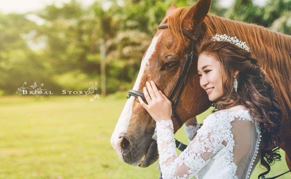 Super star wedding bridal house in johor bahru for Classic bridal house johor