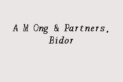 A M Ong & Partners, Bidor business logo picture