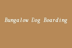 Bungalow Dog Boarding business logo picture