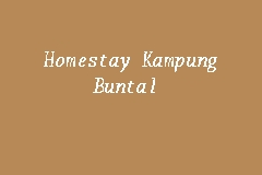Homestay Kampung Buntal business logo picture