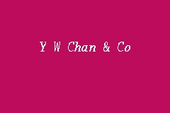Y W Chan & Co business logo picture